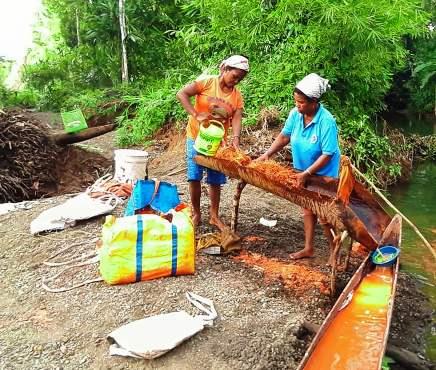 Dandes Di Papua Rp5 23 T Sebagian Untuk Bumdes Papua Times